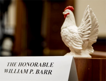 Democrats place statue of a chicken at the witness table where Attorney General Barr would have sat if he had testified.